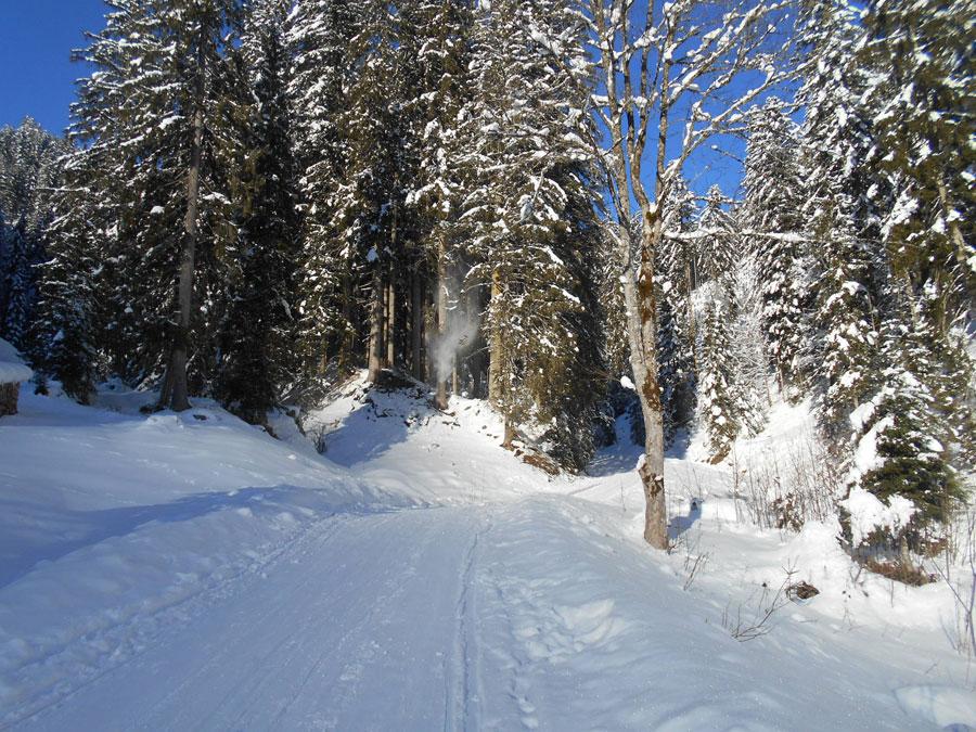 Winterwandern rodeln sittleralm 13 laemmerhof 39 s blog for Fischteich im winter