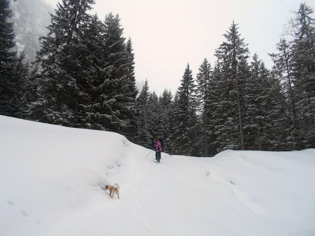 schneeschuhwanderung-aualm-maerz-11