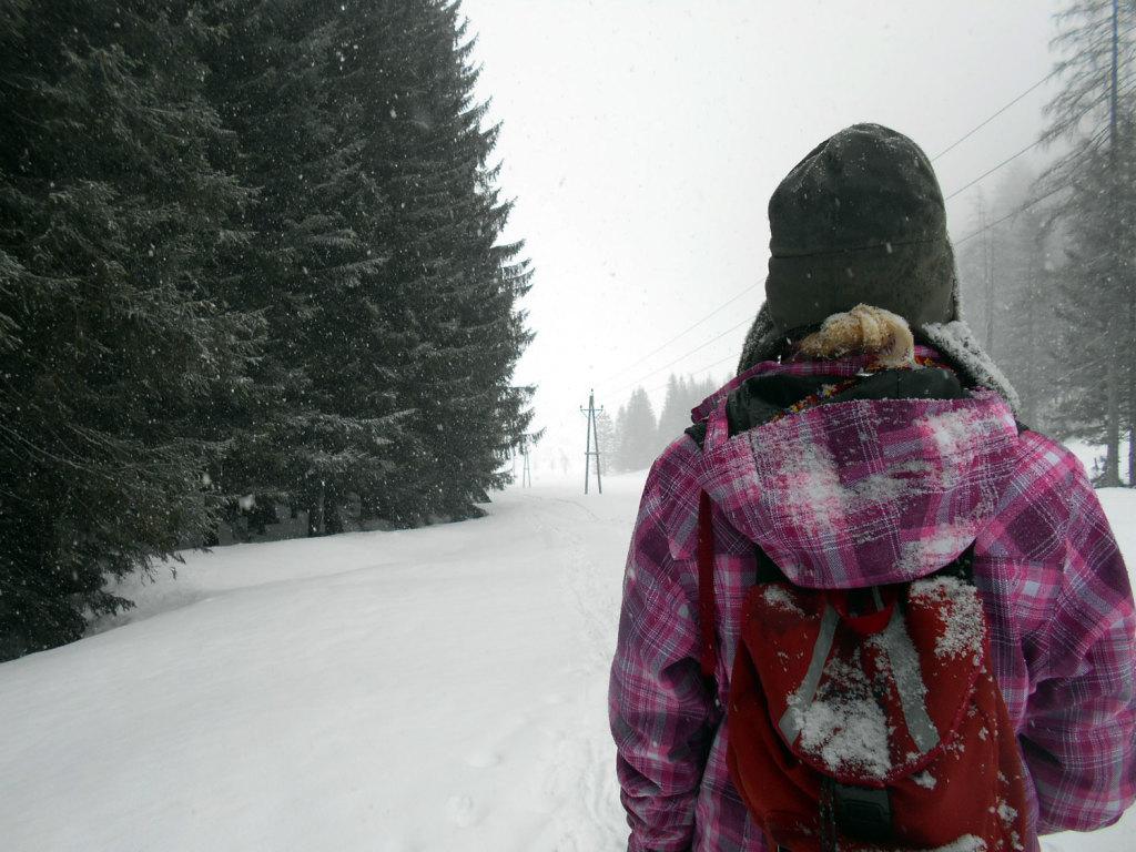 schneeschuhwanderung-aualm-maerz-3