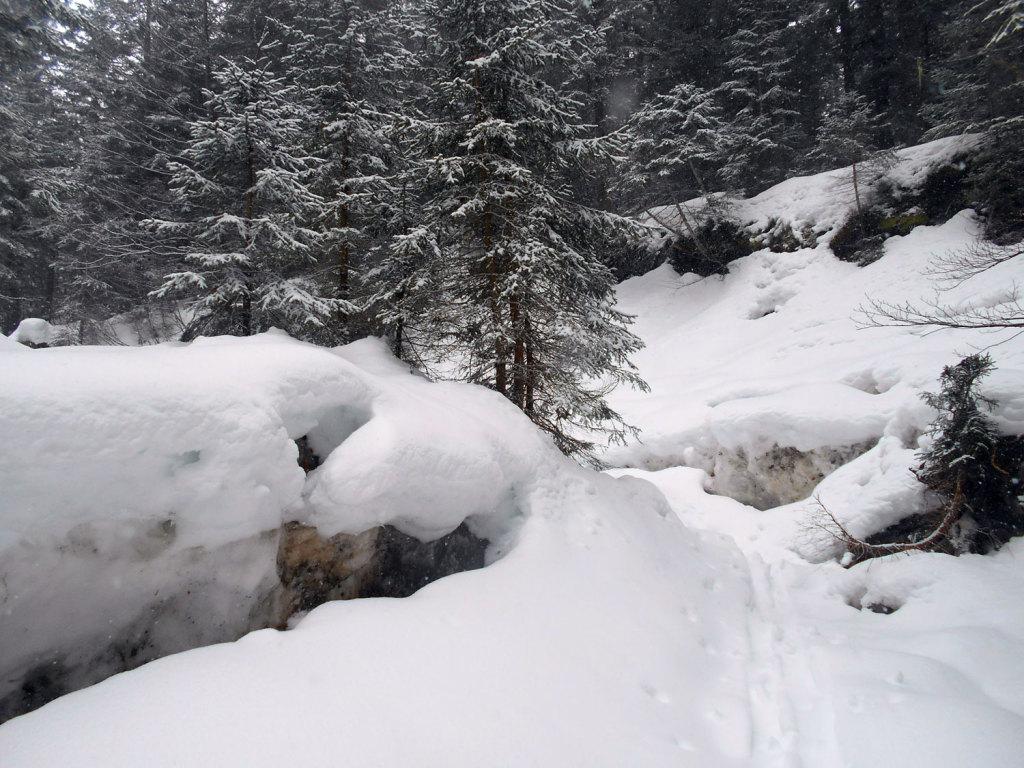 schneeschuhwanderung-aualm-maerz-5