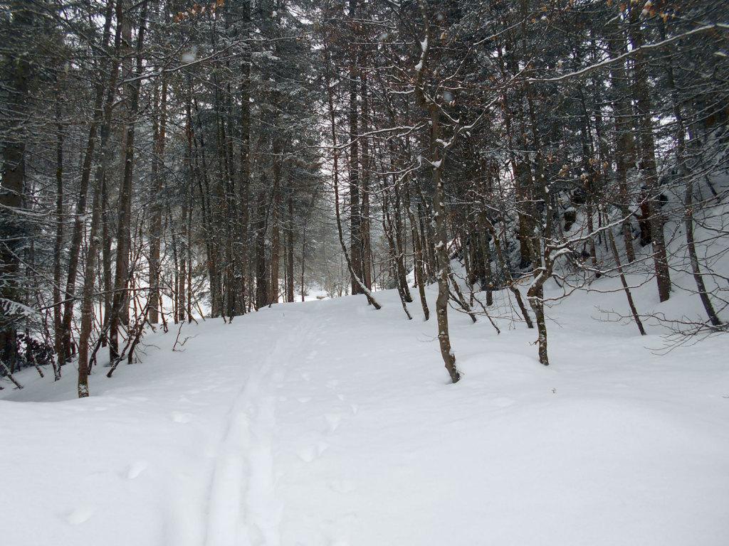 Schneeschuhwanderung aualm maerz 7 laemmerhof 39 s blog for Fischteich im winter