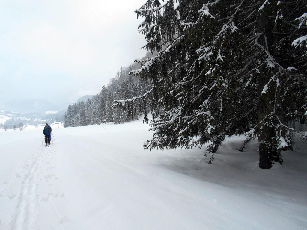Skitour lammertal maerz 9 laemmerhof 39 s blog for Fischteich im winter