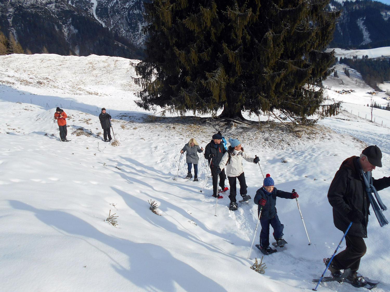 Schneeschuhwanderung weihnachten 2016 9 laemmerhof 39 s blog for Fischteich im winter