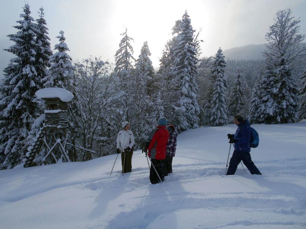 Schneeschuhwanderung spiessalm kw3 11 laemmerhof 39 s blog for Fischteich im winter