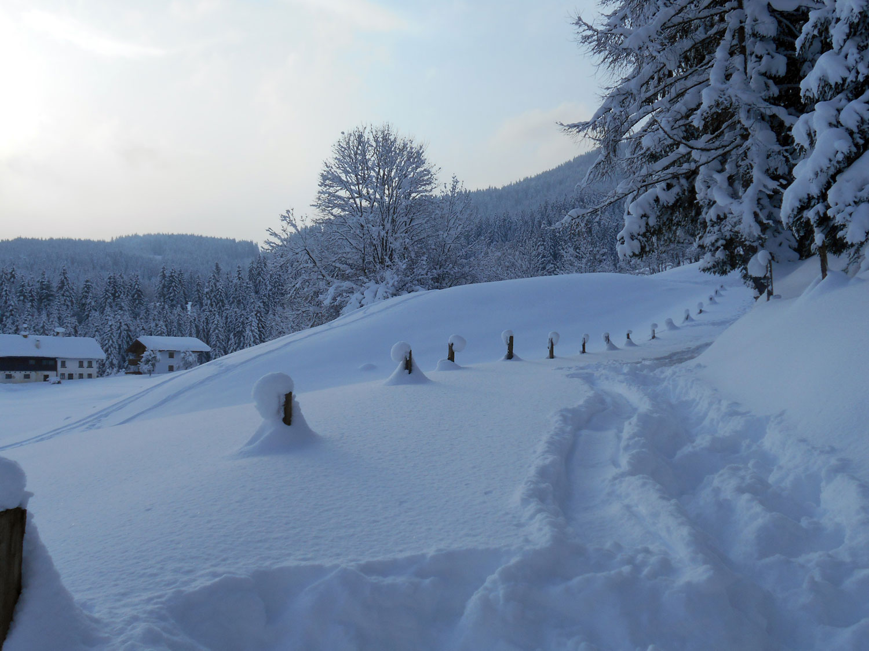 Schneeschuhwanderung spiessalm kw3 3 laemmerhof 39 s blog for Fischteich im winter