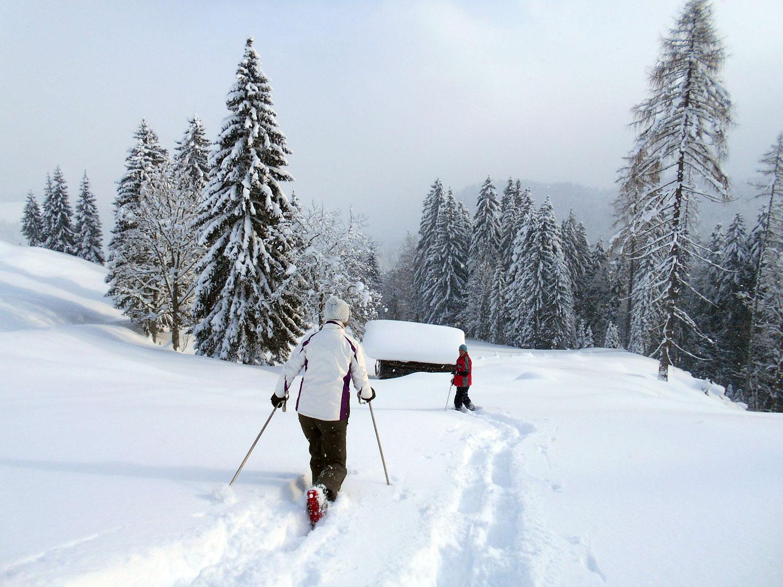 Schneeschuhwanderung spiessalm kw3 9 laemmerhof 39 s blog for Fischteich im winter