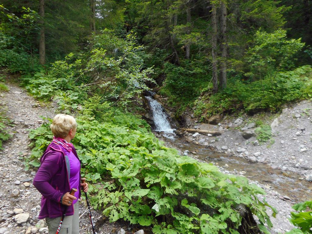Wasserfall im Lammertal