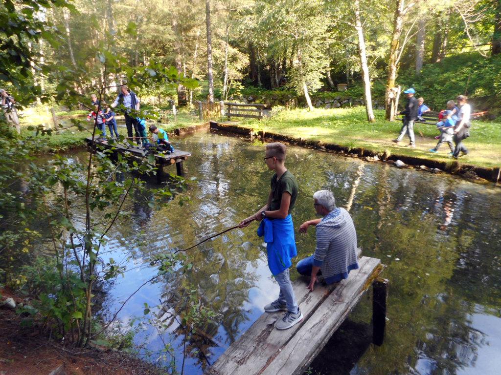 Fischteich im Lammertal