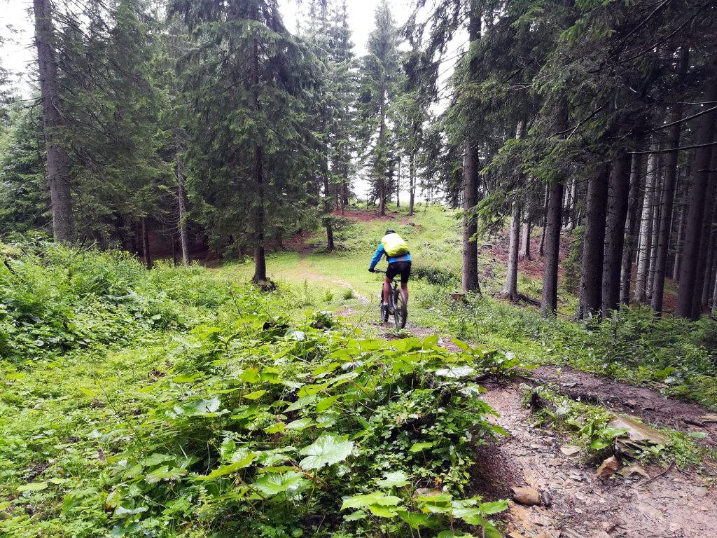 Trail Mahdalm
