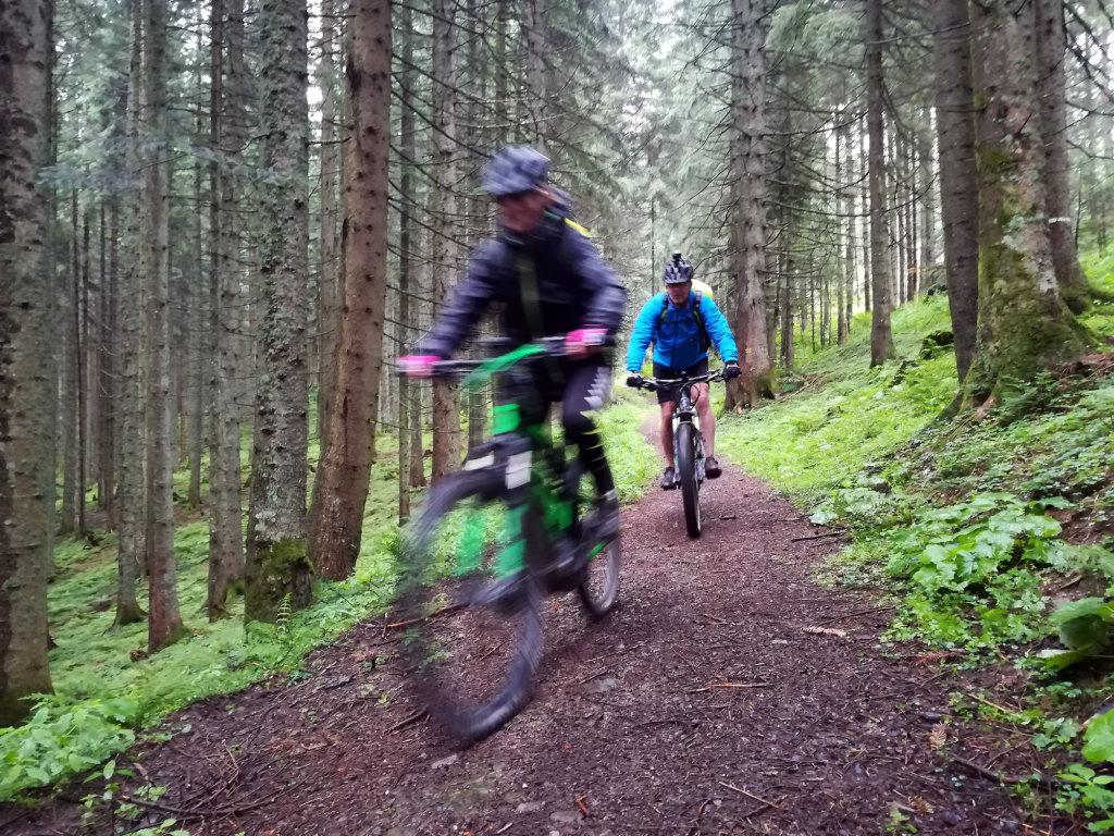 Geführte E-Bike Tour im Lammertal