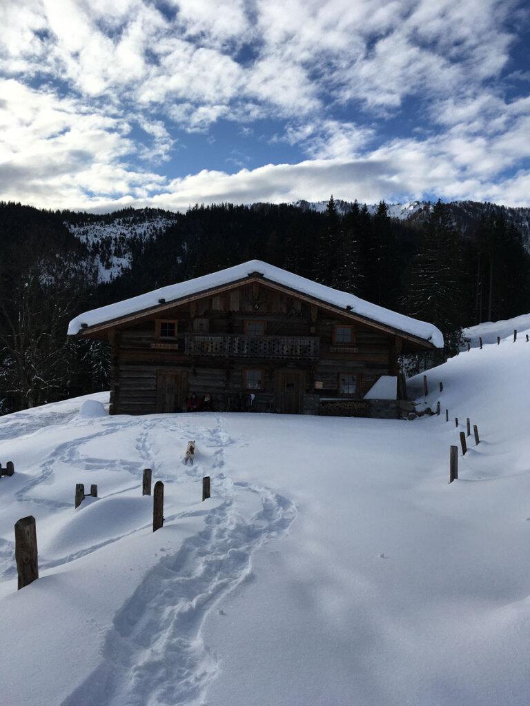 schneeschuhwanderung-spiessalm-07-jan-20-3