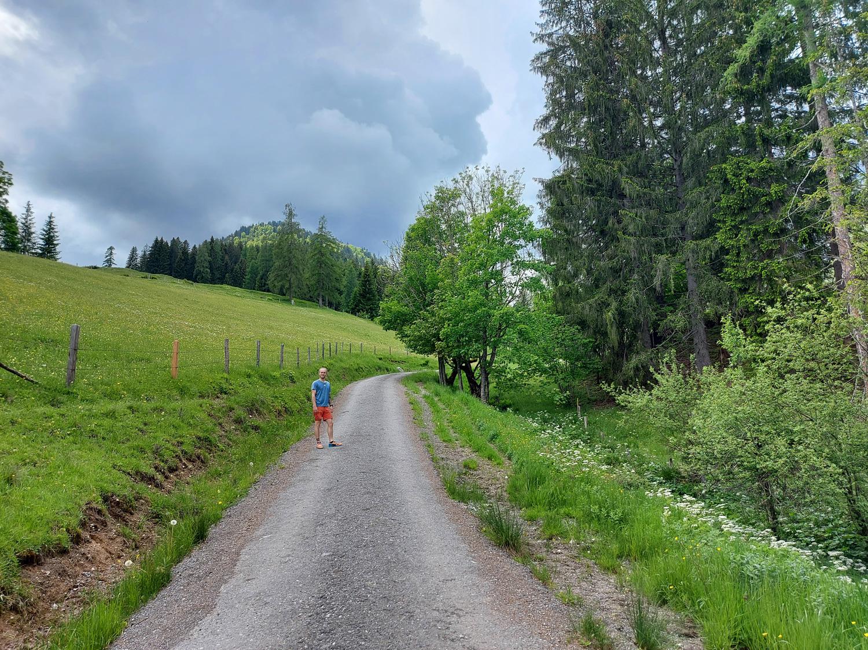 Kinderwagenfreundliche Forststraße zur Spießalm im Lammertal